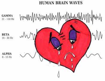how love works in the brain