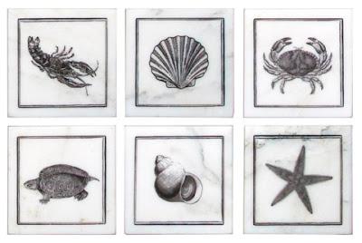 Ocean Life accent tiles