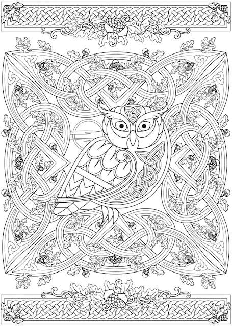 Op de boekenplank, kleurboek: Cari Buziak - 'Celtic Nature'