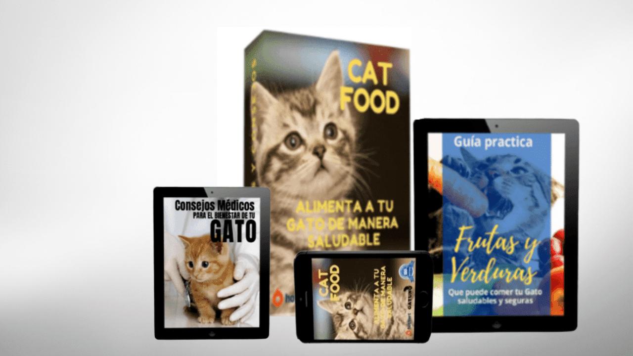 recetas saludables para gato