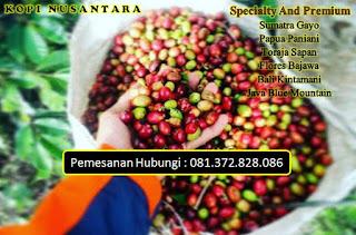 Supplier Kopi Gayo Murah Enak Online