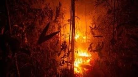 Αυξήθηκαν κατά 30% οι πυρκαγιές στο τροπικό δάσος του Αμαζονίου το 2019
