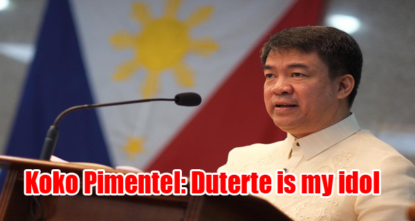 Image result for Aguirre and Koko pimentel