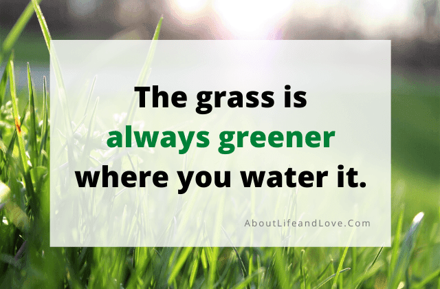 The Grass Is Greener Where You Water It quote