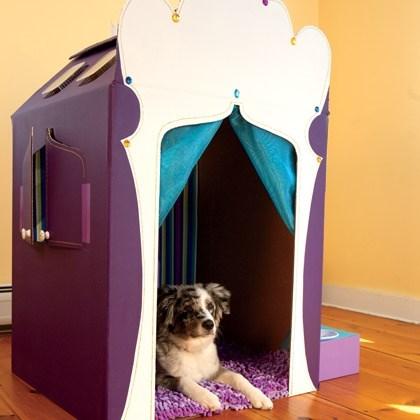 A Pet's Palace