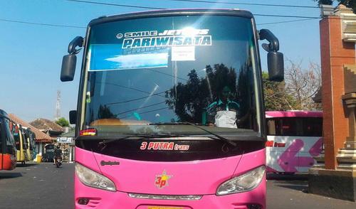 harga sewa bus pariwisata wilayah surabaya