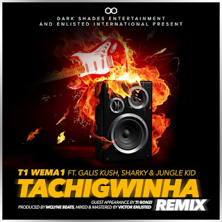 [feature]T1 WeMa1 - Tachigwinha (REMIX) (Feat. Gallis Kush, Sharky & Jungle Kid)
