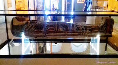 museu nacional Caixão de Sha Amun En Su
