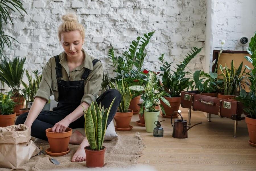 Mujer cuidando sus plantas en macetas
