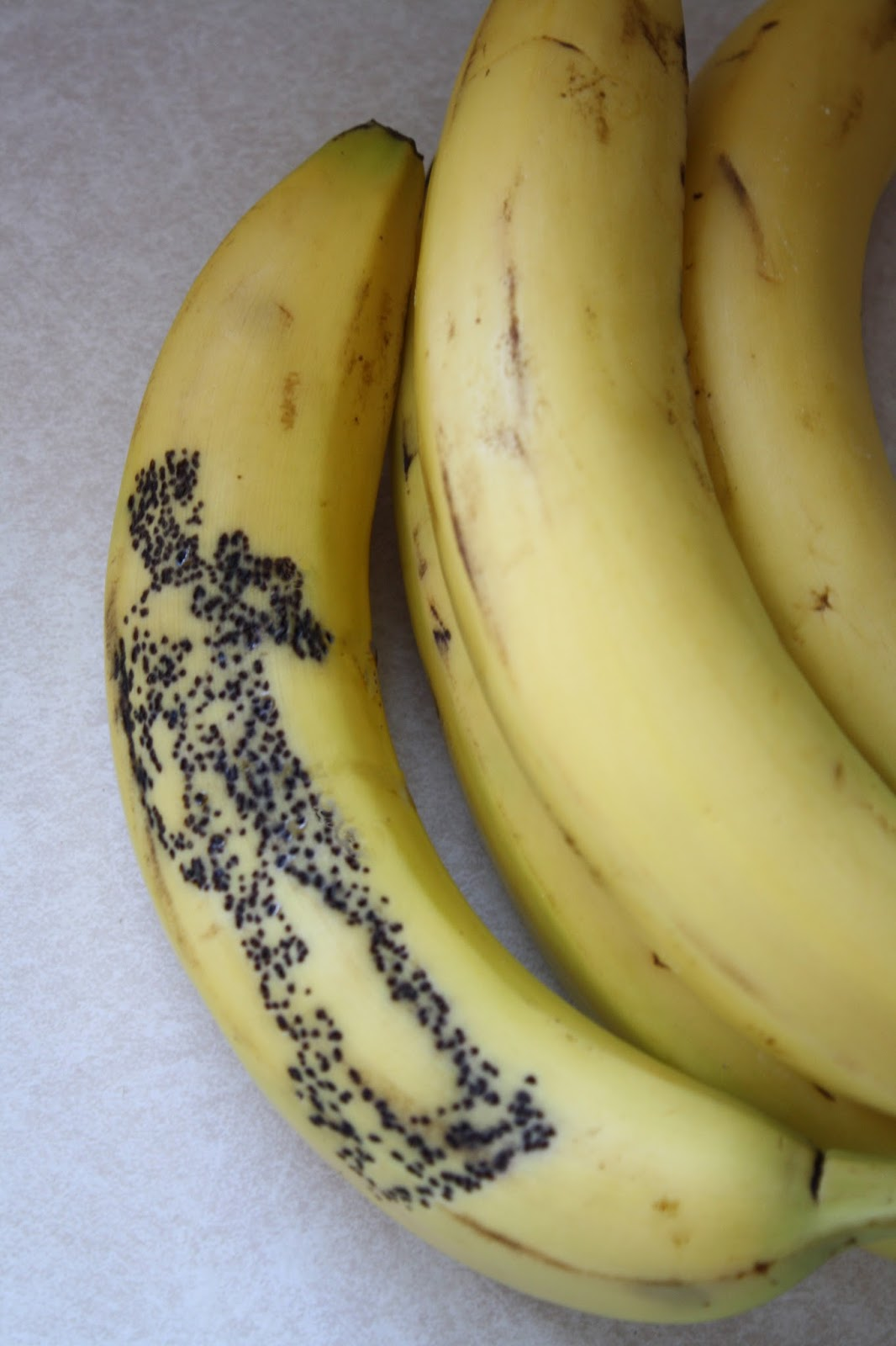 Funny Banana Display Pictures