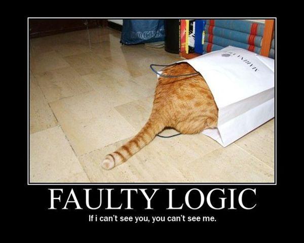 Cat Logic Wordless Wednesday