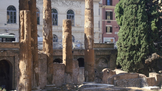 Largo Argentina, Roma, elisaorigami, travel, blogger, voyages, lifestyle