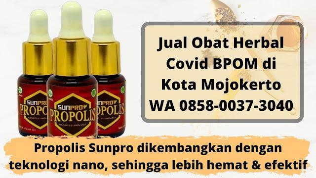 Jual Obat Herbal Covid BPOM di Kota Mojokerto WA 0858-0037-3040