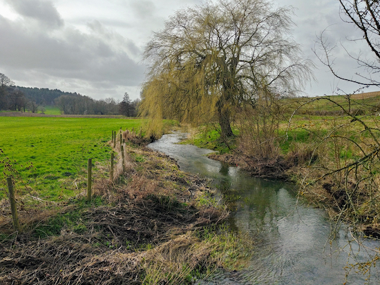 The River Ash south-west of Wareside mentioned in point 10 below  Image by Hertfordshire Walker released via Creative Commons BY-NC-SA 4.0