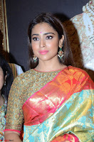 Shriya Saran Looks Stunning in Silk Saree at VRK Silk Showroom Launch Secundrabad ~  Exclusive 065.JPG