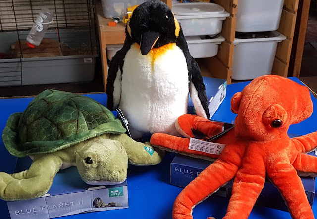 Posh Paws BBC Earth Soft Toys Review Sea Turtle Penguin and octopus on table