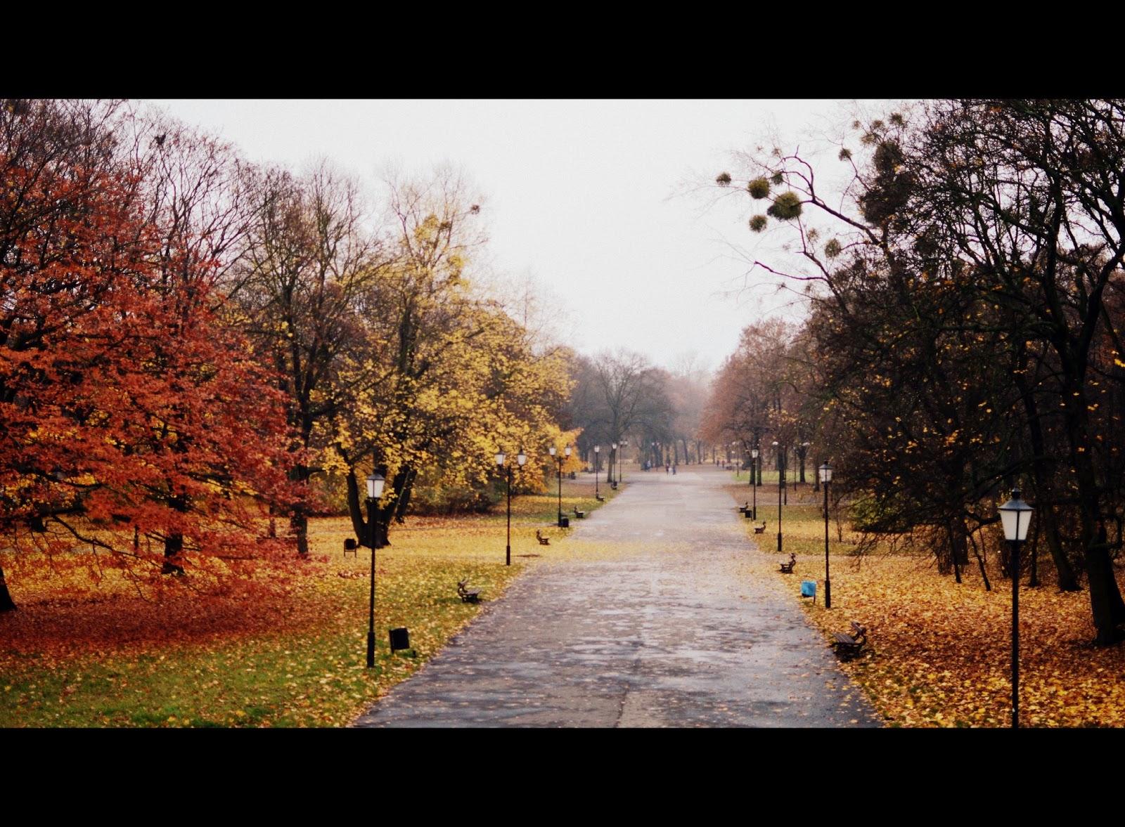 Melancholijna jesienna wystawa...