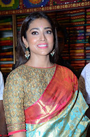 Shriya Saran Looks Stunning in Silk Saree at VRK Silk Showroom Launch Secundrabad ~  Exclusive 004.JPG