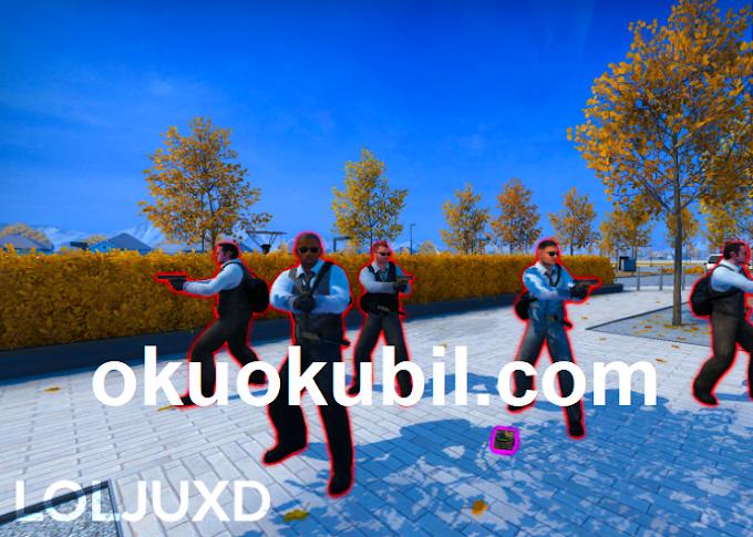 Counter Strike LOLJUXD v2.8 GlowESP - Renklendir  Bunnyhop - Hızlı Hareket Hilesi İndir