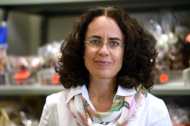 Pioniere der Bio- und Fair-Trade-Schokolade - Monica Müller, CEO von Chocolat Stella Bernrain