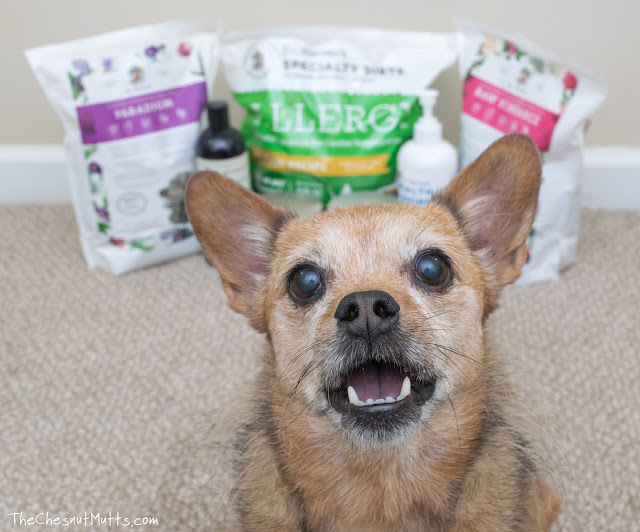 Dr. Harvey's Dog Food and Supplements