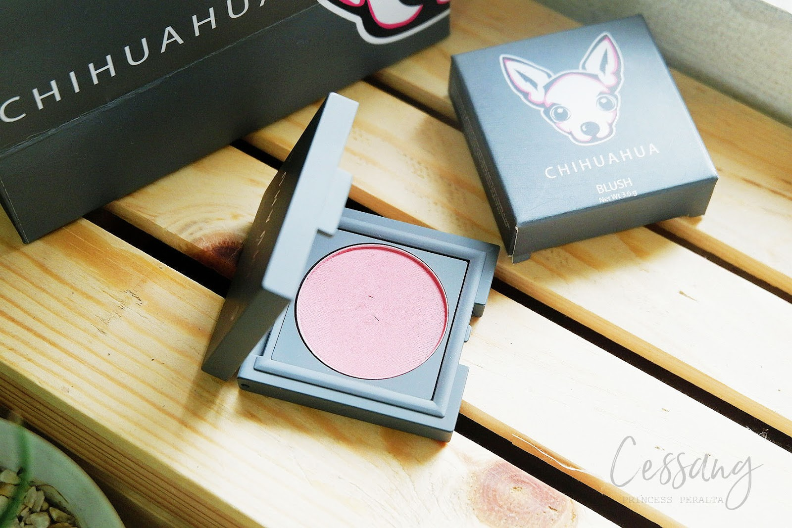 CHIHUAHUA COSMETICS: HALF THE PRICE, HALF THE SIZE! IS IT WORTH IT?