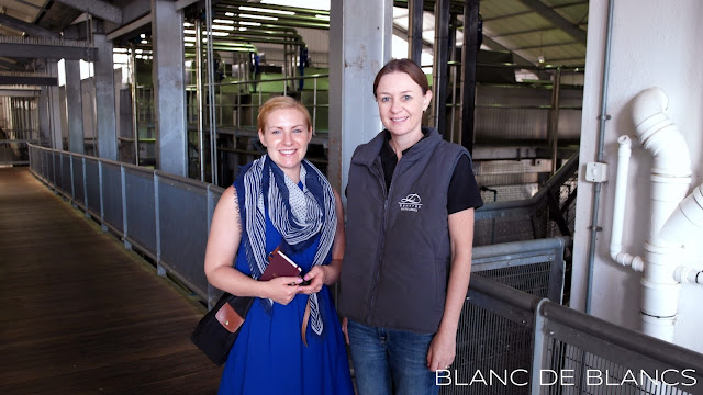Nederburg cellar master Andrea Freeborough - www.blancdeblancs.fi