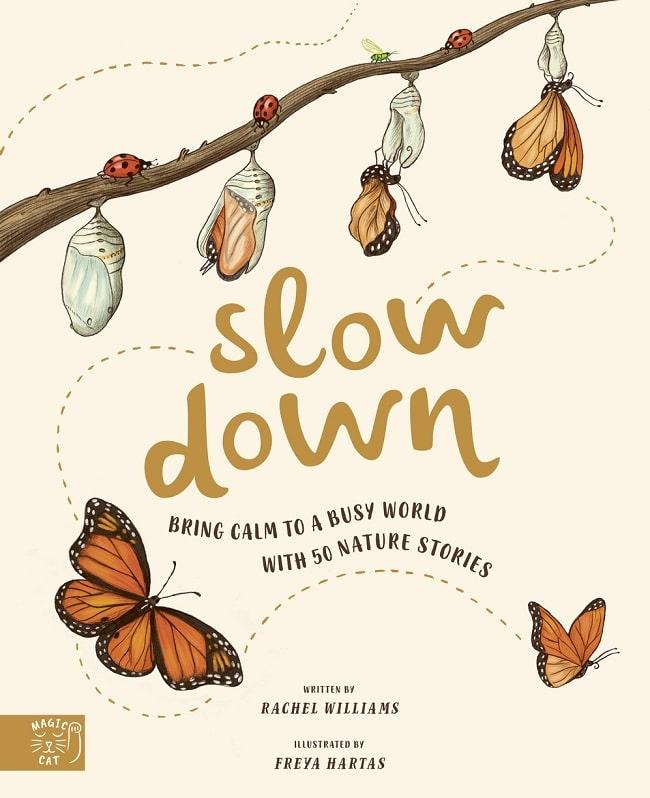 slow down by rachel williams