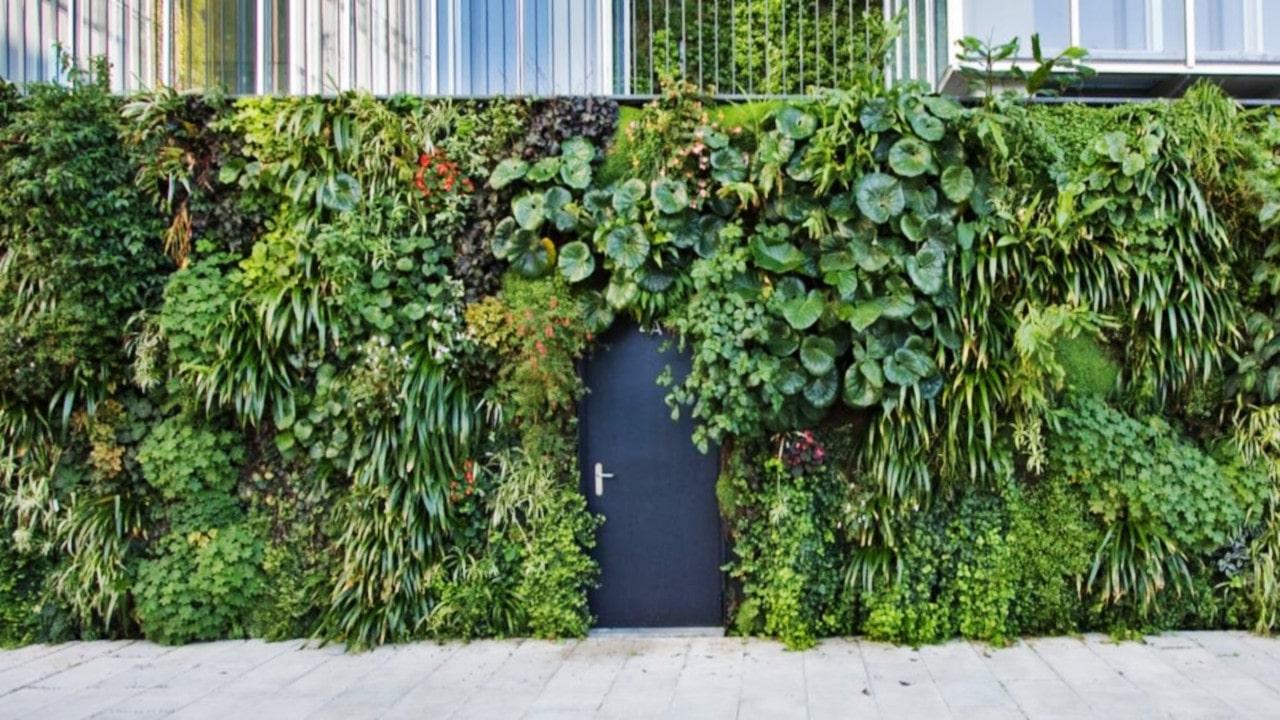 fachadas mamalonas con  jardines verticales