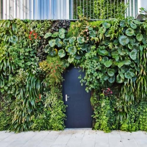 Jardines Verticales | ¿Que es y como hacer un jardín en 2020? 🥇