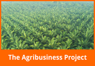 The Agribusiness Project
