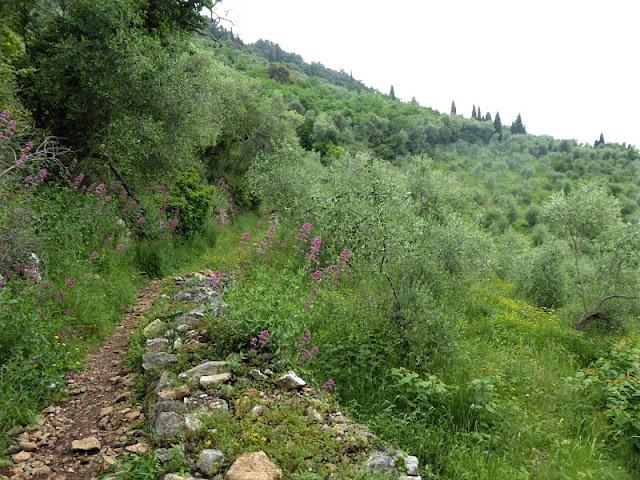 sentiero verdeazzurro che dalla Serra porta a Zanego