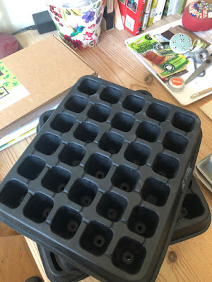 Black rubber seed growing module trays