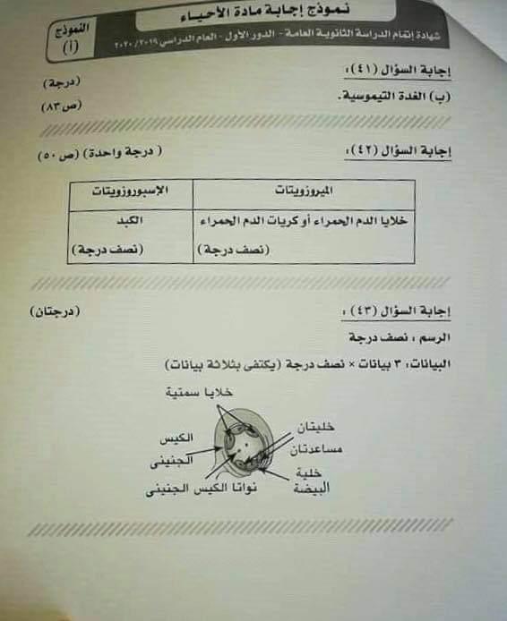 نموذج الإجابة الرسمى لامتحان الاحياء للصف الثالث الثانوى الدور الأول2020