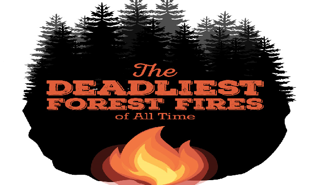 The Deadliest Forest Fires of All Time #infographic