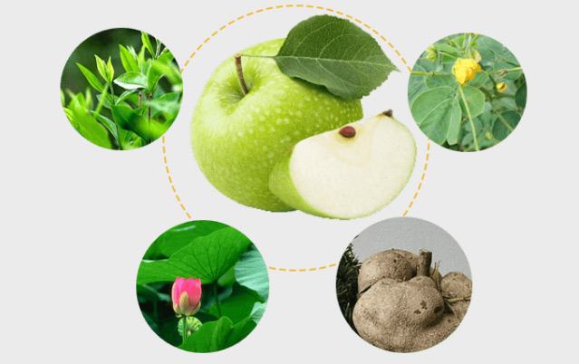 nhf phần của viên giảm cân hoa bảo