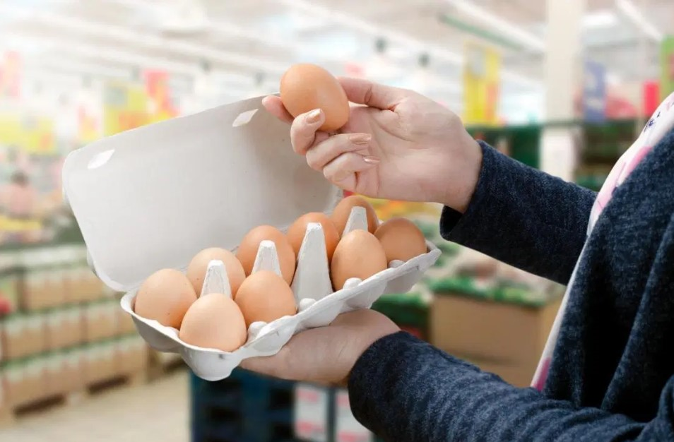 Checking The Freshness of Eggs