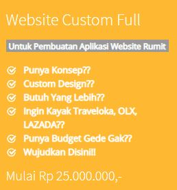 Website Custom Full