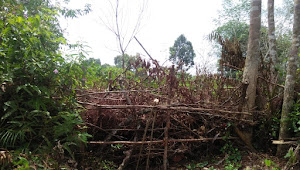 JUT Desa Sungai Ulas Kecamatan Muara Siau Sudah Kantongi Izin