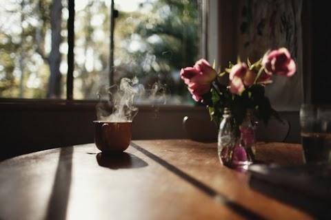 A Simplicidade é a maior ostentação da vida