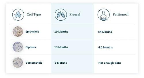 Sarcomatoid Mesothelioma Clinical Stage Two