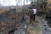Resahkan Warga  Kebakaran Hutan Produktif Mencapai 12 Hektar