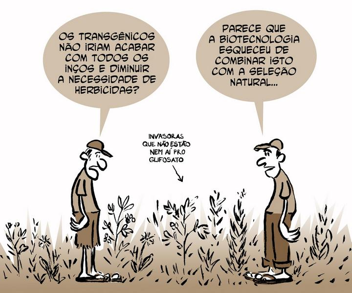 BIOTECNOLOGIA - EMBRAPA, TRANSGÊNESE E AGRICULTURA ORGÂNICA
