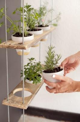 indoor herb garden ideas diy