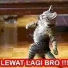 Gambar DP BBM Kata Kata Kocak Konyol Lucu Ngaco