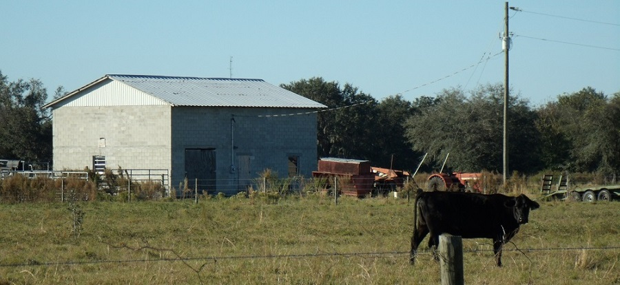 Zonas rurales del Sunshine State