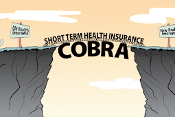 Cobra - Fall Back Health Insurance