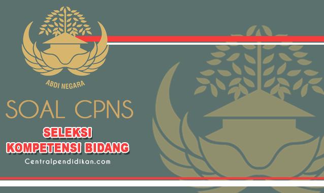 Soal SKB CPNS 2021 : Seleksi Kompetensi Bidang dan Pembahasan PDF