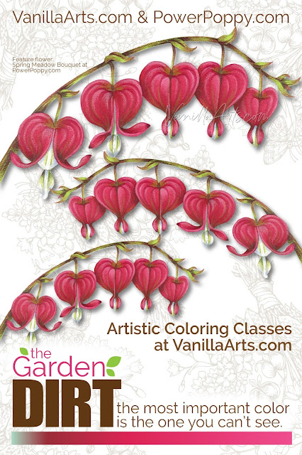 Amy from VanillaArts.com helps you add realism to Copic Marker blends by underpainting with complementary colors. Pale green marker creates natural looking shade underneath magenta markers for a beautiful Bleeding Hearts flowers. | PowerPoppy.com | #copicmarker #realisticcoloring #underpainting