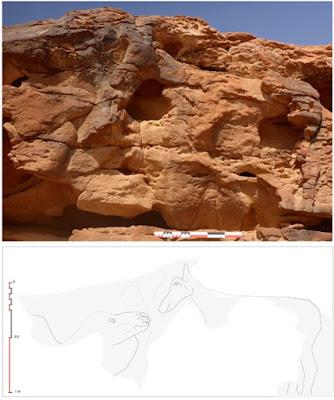 Patung Unta Abad Pertama SM Ditemukan di Arab Saudi